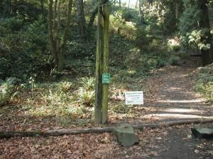 Marquam Trail crossing Fairmont Blvd.