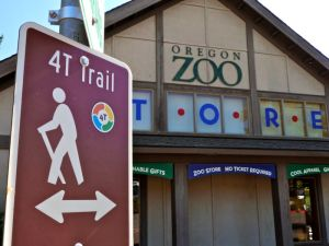 Zoo on the 4T